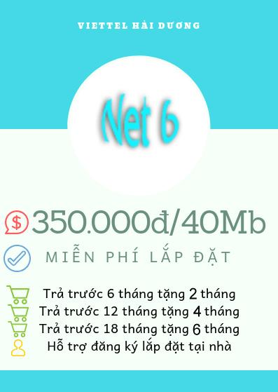 net 6